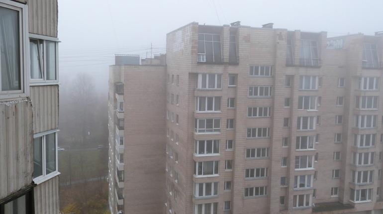 Водителей в Петербурге предупредили о тумане в воскресенье