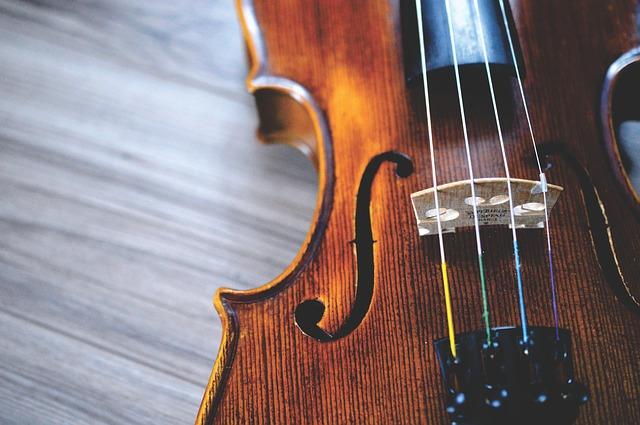 Ролдугин предложил маркировать вывозимые за границу инструменты