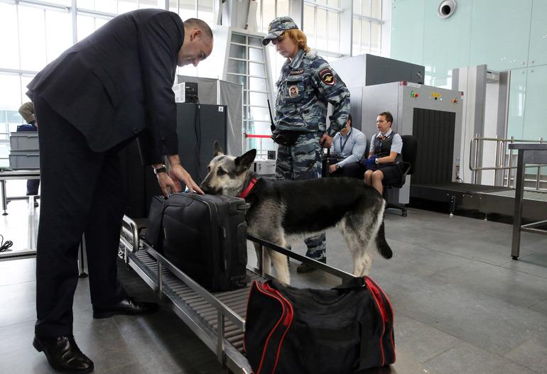 Новые правила проверки багажа на российских таможнях вступают в силу