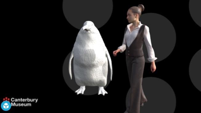 Останки пингвина ростом с человека нашли в Новой Зеландии