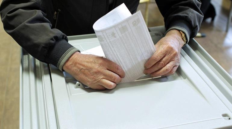 На голосующих в МО Смольнинское могли воздействовать «Умным голосованием»