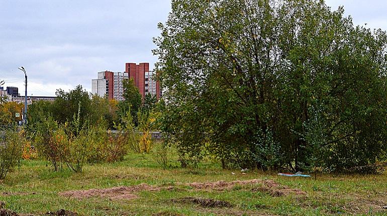 Парка на Смоленке жители Васильевского в ближайший год не дождутся