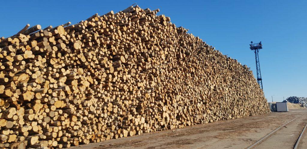 Через Бронку контрабандисты пытались провезти 900 тонн леса