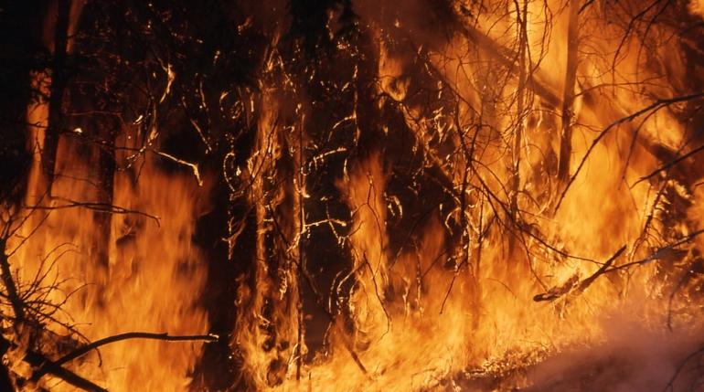 Жители Пикалево собирают вещи для осиротевшей после пожара девочки