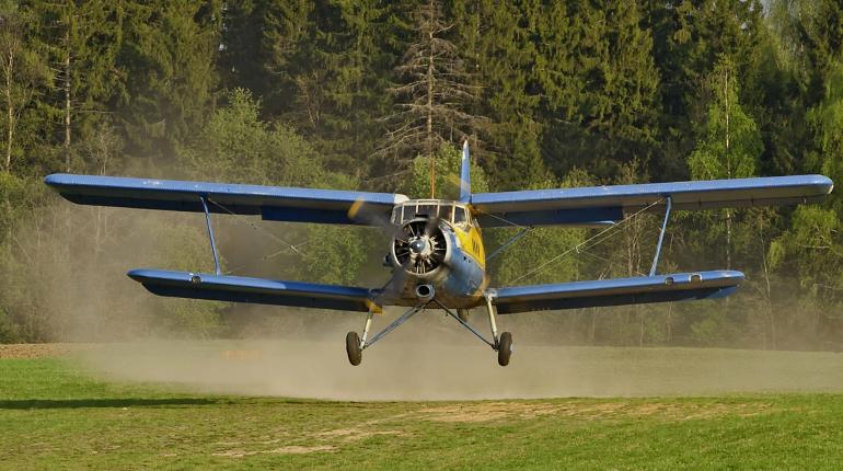 Самолёт Ан-2 упал в Нижегородской области