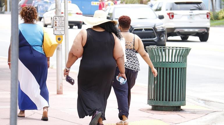 Ученые связали ожирение с пластичностью мозга