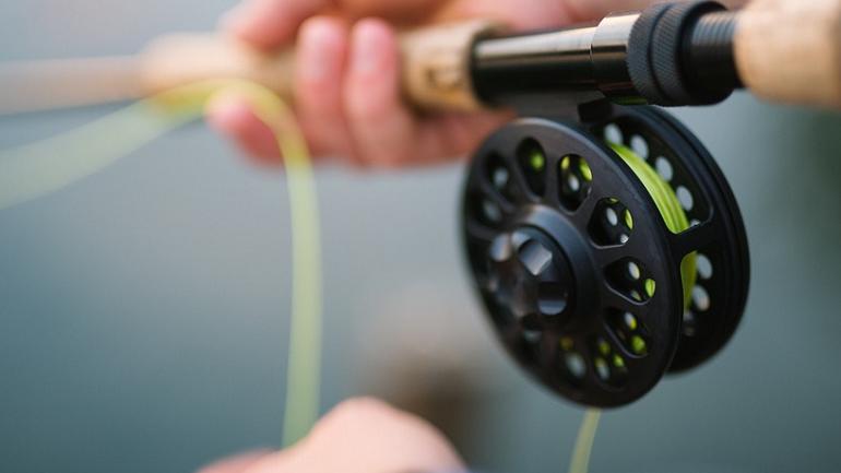 В Ленобласти у рыбаков отобрали 3 кг рыбы и выписали штрафов на 100 тысяч