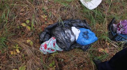 В Тюменской области няню подозревают в похищении и убийстве младенца