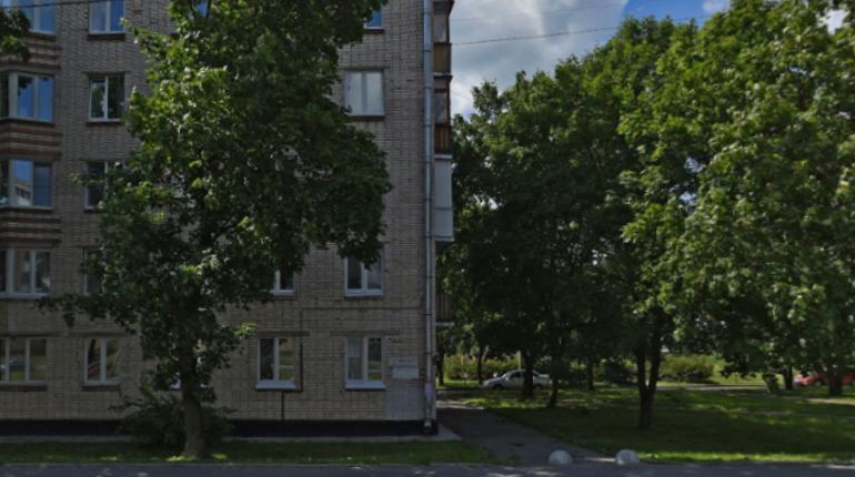 Труп задушенной женщины нашли в квартире на Гатчинском шоссе