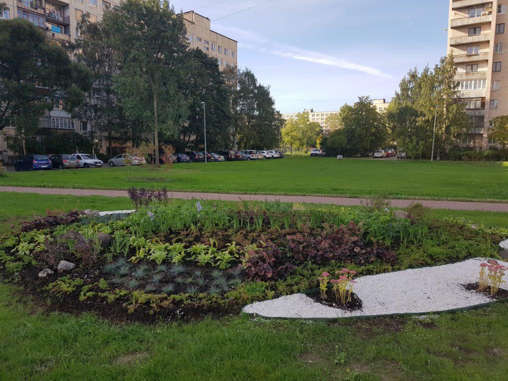 Дикое поле на Купчинской превратили в городской сквер