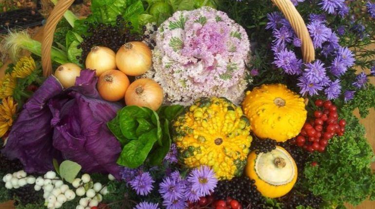 В МЧС посоветовали после покупки овощей и зелени замачивать их