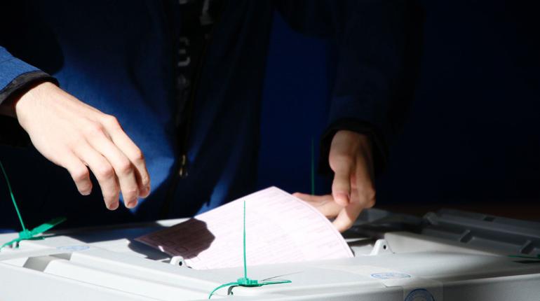 Итоги выборов муниципалов в ряде округов Петербурга могут аннулировать