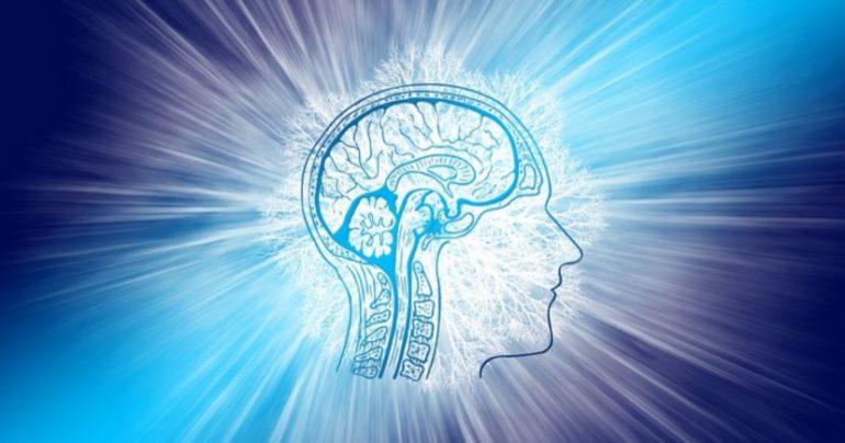 Ученые: мозг обрабатывает боль, как обогреватель с термостатом