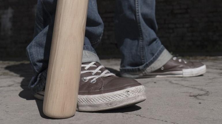 Подросток с битой похитил инструменты из дома в Ленобласти