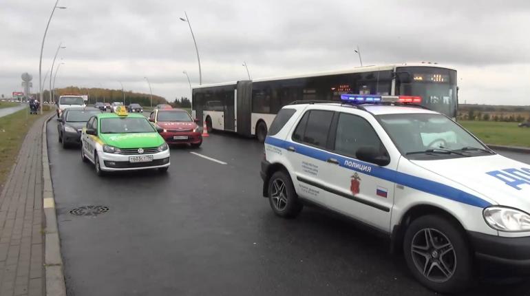 В Петербурге отловили 50 нелегальных такси