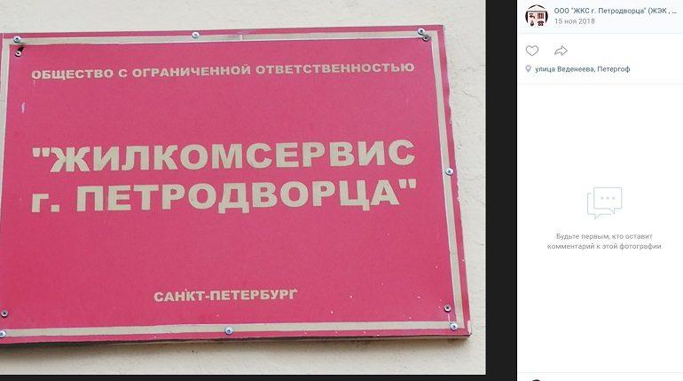 Директору ЖКС Петродворца выписали штраф за нерасторопность