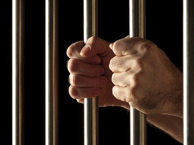 В Петербурге арестованы подозреваемые в избиении сына депутата