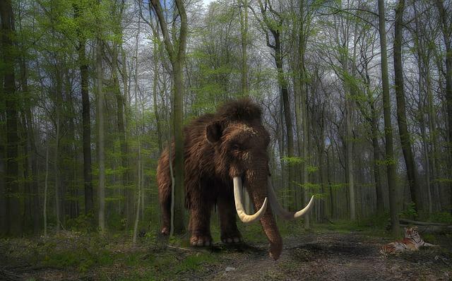 Ученые выяснили, отчего вымерли мамонты