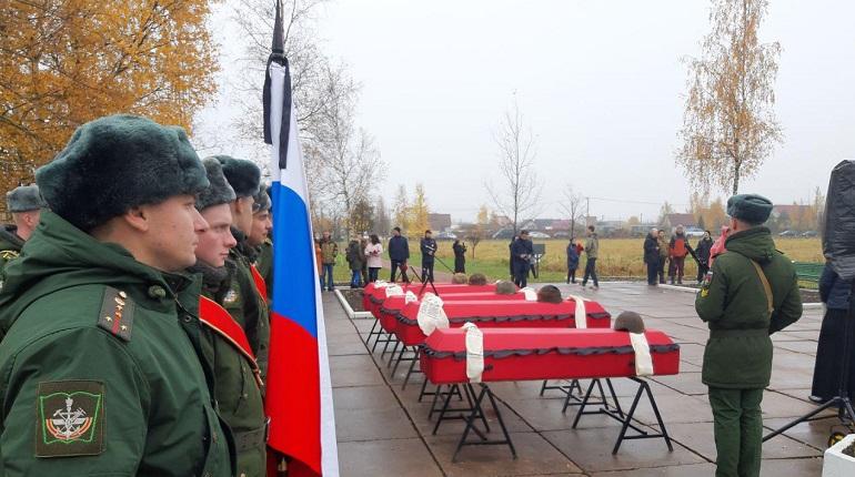 «Благодаря им память жива»: поисковики из Пушкина нашли 36 красноармейцев