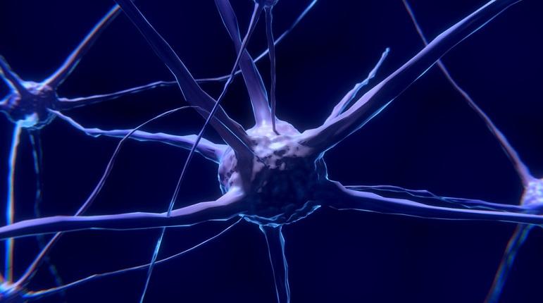 Невролог объяснил, почему человек забывает плохое