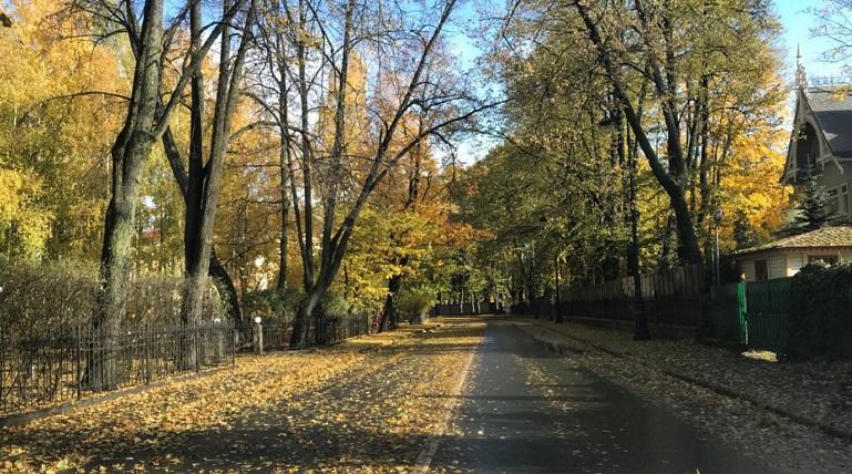 Врач призвала россиян не ходить в парки осенью