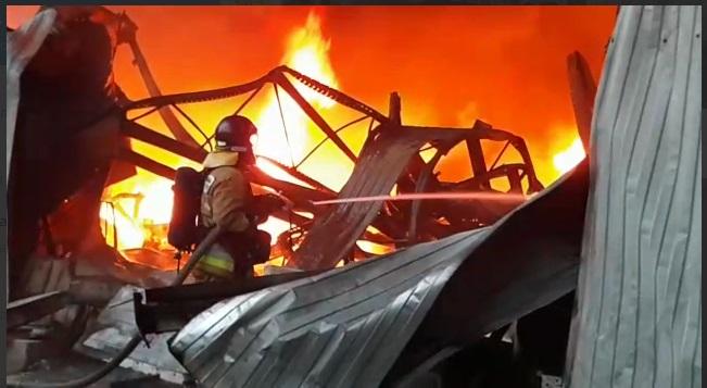 Пожар в СНТ «Полиграфмаш» в Ленобласти унёс жизни целой семьи