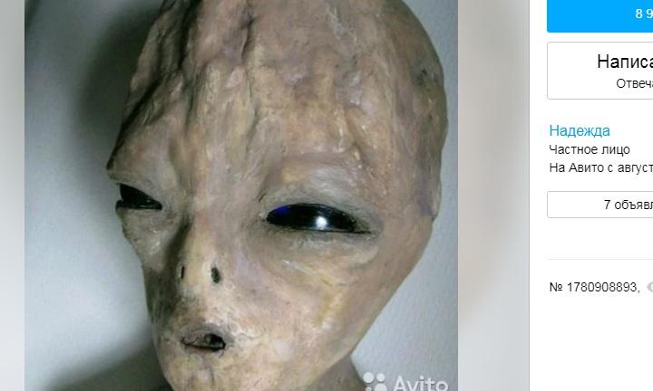Петербурженка продает инопланетянина с раной на груди за 30 тысяч рублей