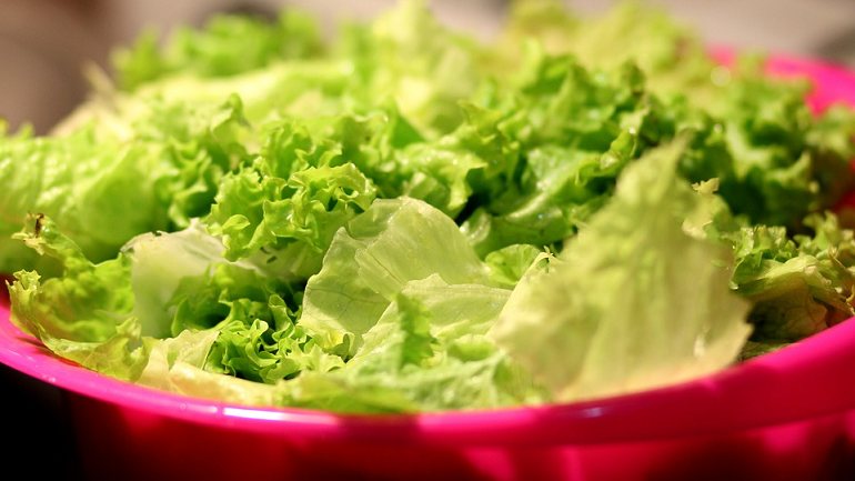 В Петербурге в печь отправляют 10 тонн кишащего насекомыми салата из Ирана