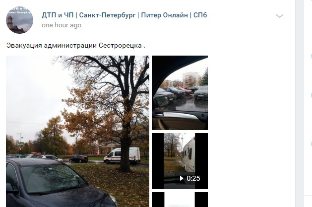 В Сестрорецке вместе с кинотеатром эвакуировали чиновников