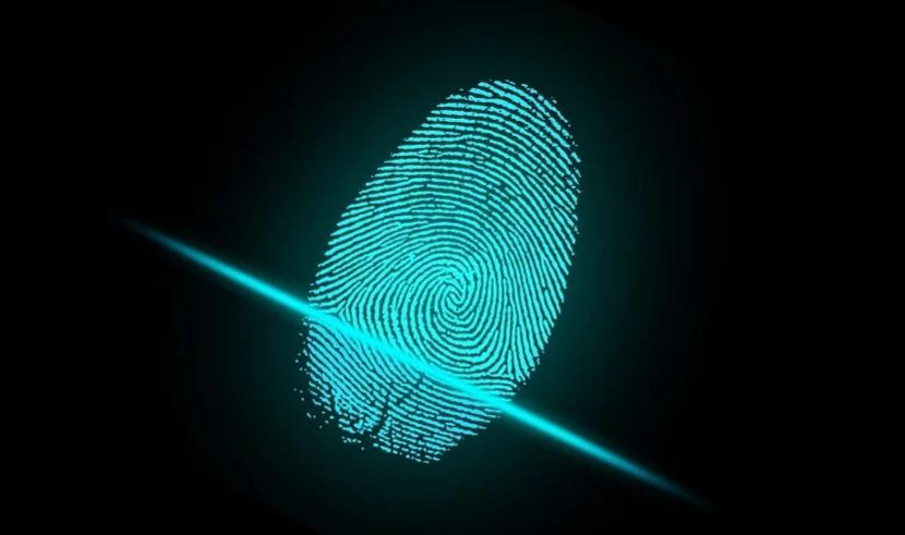 Ученые научились выявлять наркоманов по отпечатку пальца