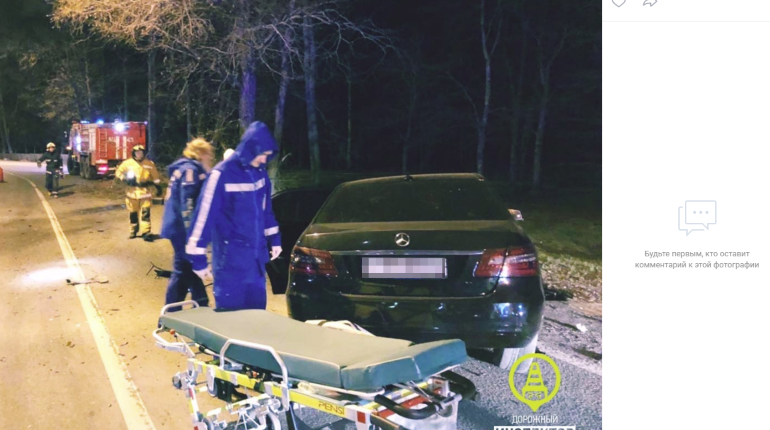 Водитель Mercedes погиб на Приморском шоссе, влетев в дерево
