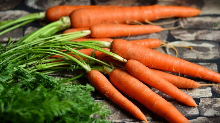 Морковь полезна не для всех