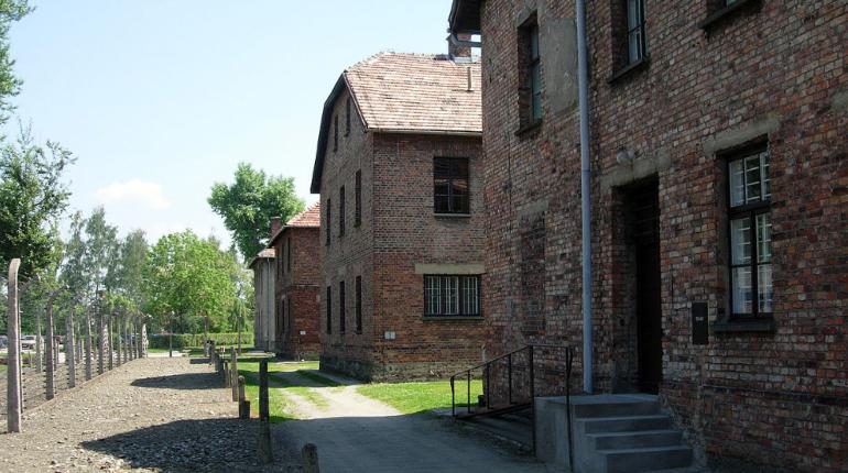 Фото резиновой утки на фоне Освенцима возмутило Сеть