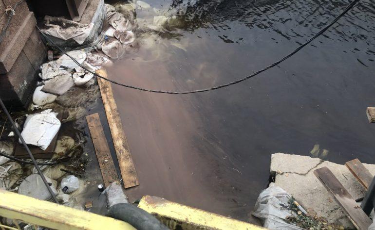 Экологов насторожили коричневые пятна в Мойке у Красного моста