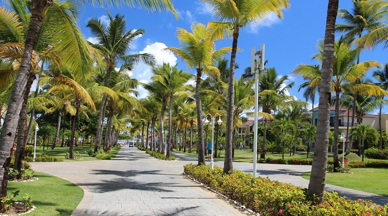В Доминикане зафиксировали первый случай заражения коронавирусом
