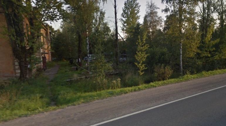 Шестилетнего мальчика сбили на Петрозаводском шоссе