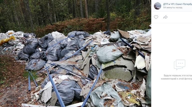В Ленобласти с начала года ликвидировали 979 свалок