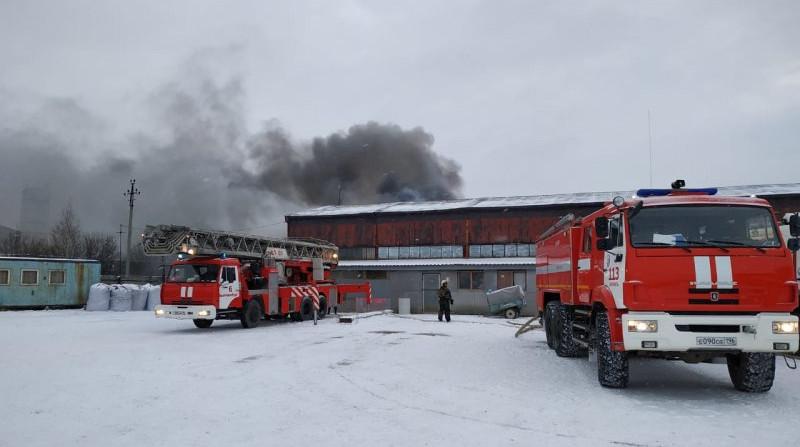 Под Екатеринбургом потушили склад с автопокрышками