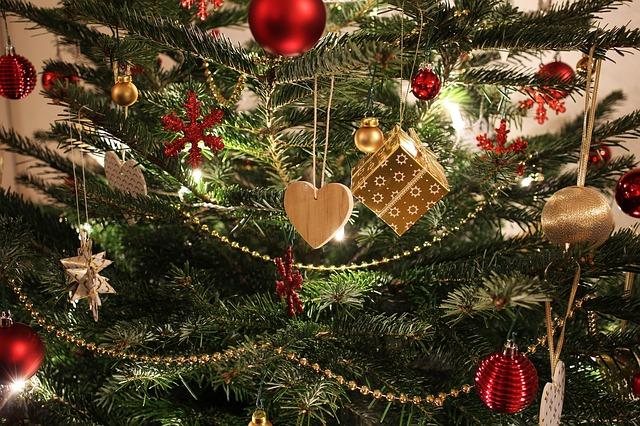Как и где петербуржцу купить елку к Новому году