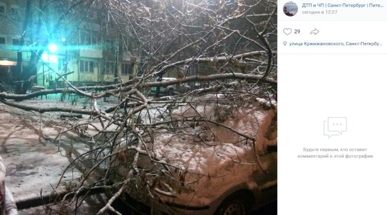 ДТП и деревья на машинах: Петербург разгребает последствия ночного снегопада