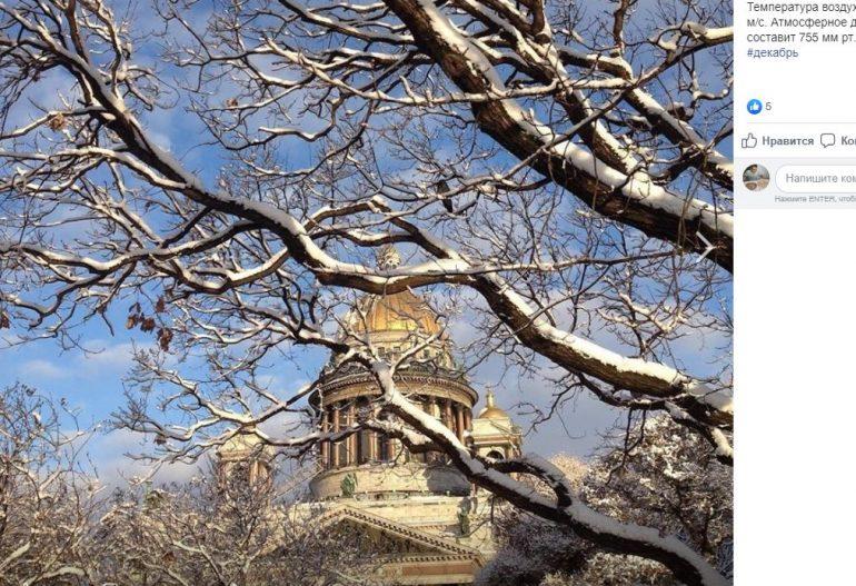 Небольшой снег и «минус»: четверг в Петербурге будет солнечным и морозным