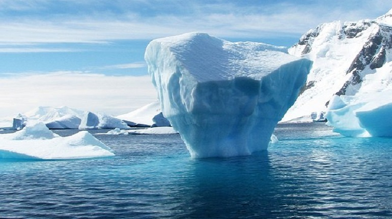 В Петербурге расскажут о выставке к 200-летию открытия Антарктиды