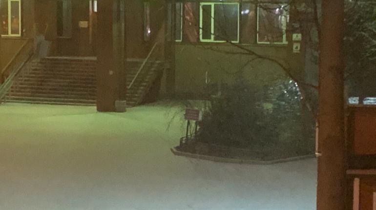 Петербург засыпает долгожданным снегом — город предвкушает утренние пробки