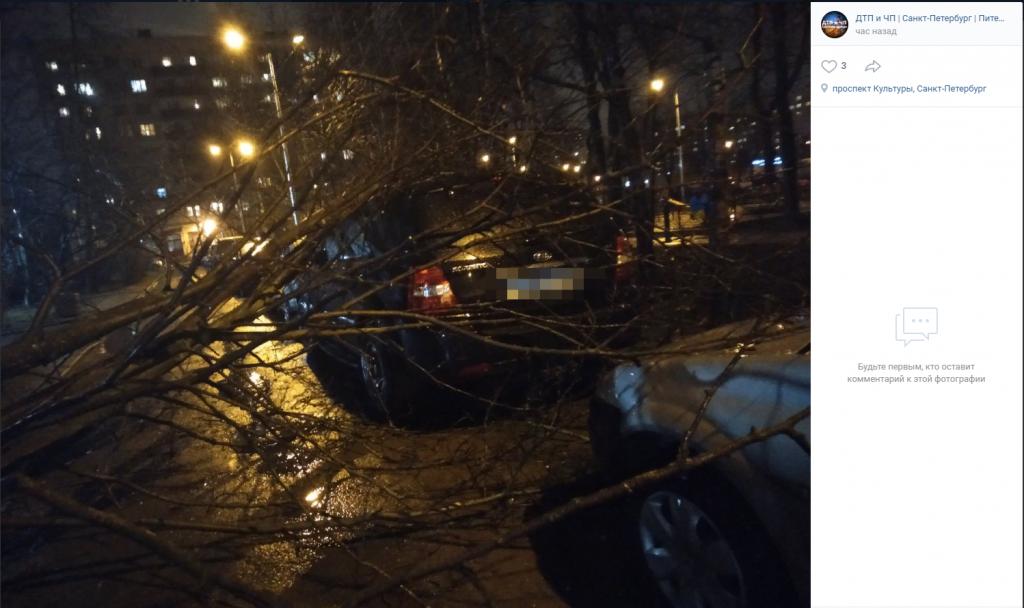 Ветер продолжает буйствовать в Петербурге: деревья падают на авто