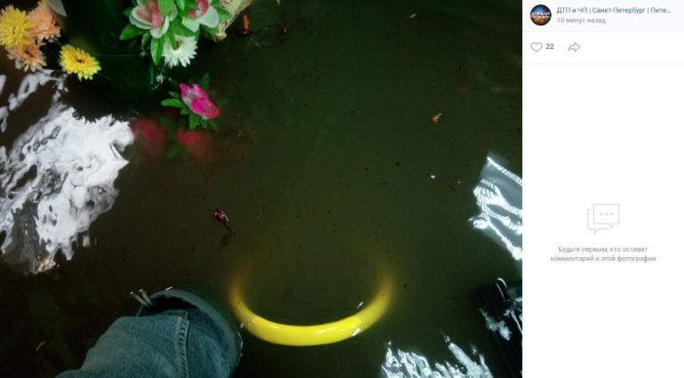 Воды по колено: на проспекте Испытателей затопило магазин