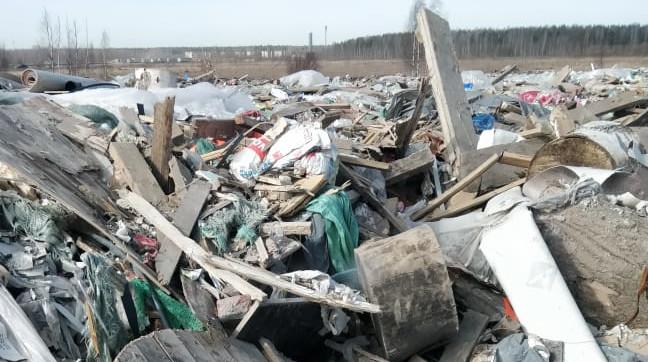 В Ленобласти объявили конкурс на переработку мусора
