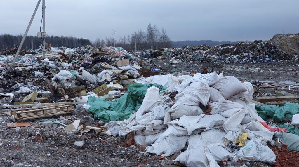В Ленобласти за два месяца этого года уничтожили 124 незаконные свалки