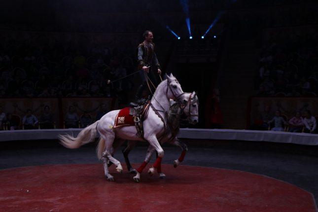 Артисты Итальянского цирка привились от коронавируса в Петербурге перед выступлением
