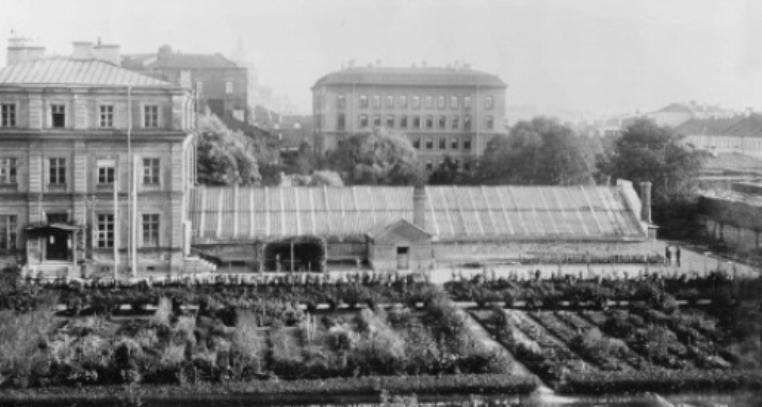 Ботанический сад СПбГУ хотят сделать открытым — как в Оксфорде