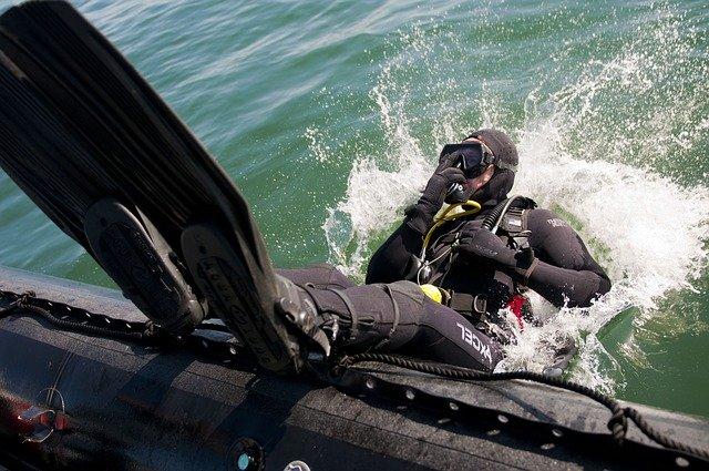 Дайвер рассказал об ощущениях нахождения в пасти кита у себя в соцсетях